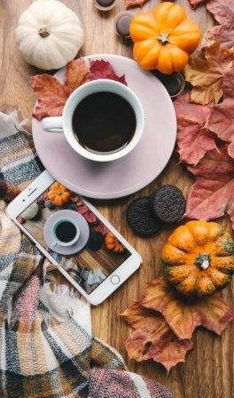fall into good habits and stay organized
