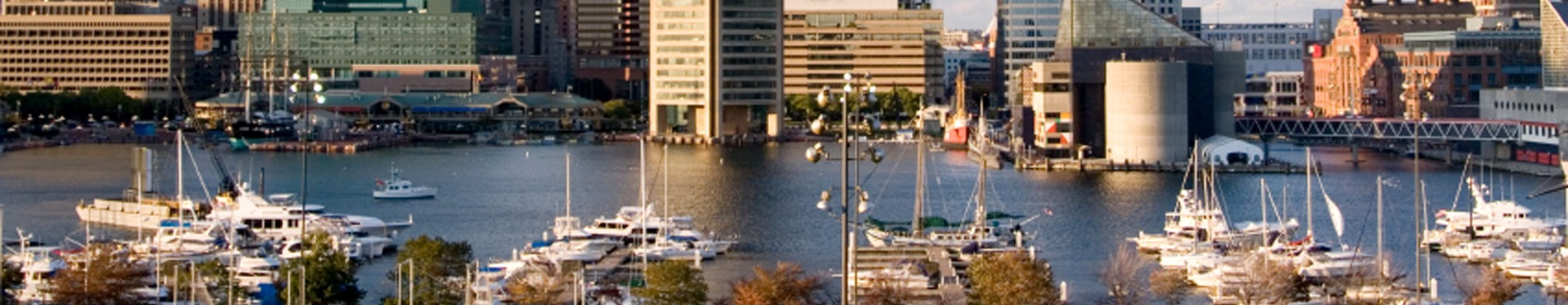 Baltimore Header